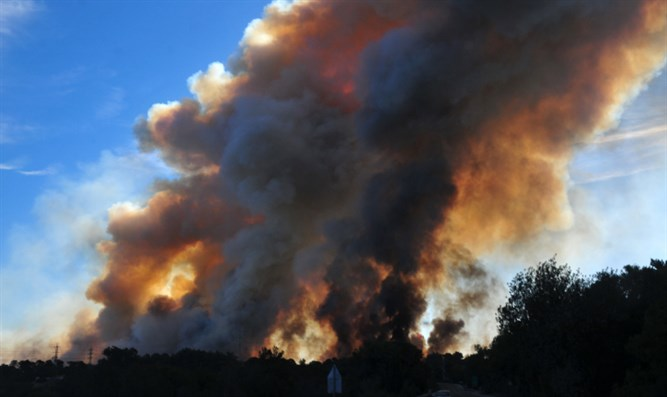 Forest fire (illustrative)