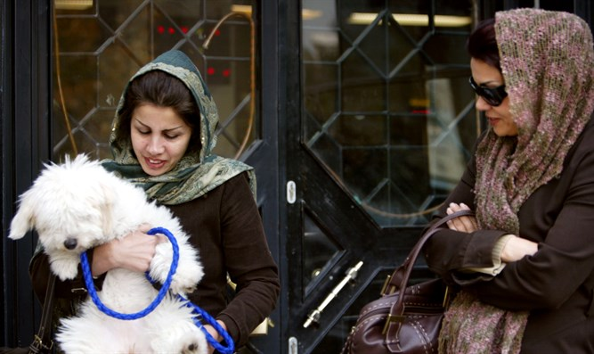 Iranian woman holds her dog outside of Tehran bank
