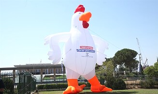 'Chicken protests' outside the Knesset