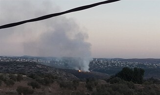 Coordinated smoke plague in Judea and Samaria
