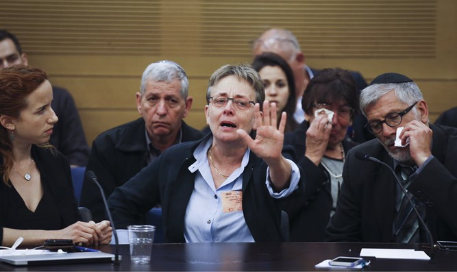 Leah Goldin at the Knesset