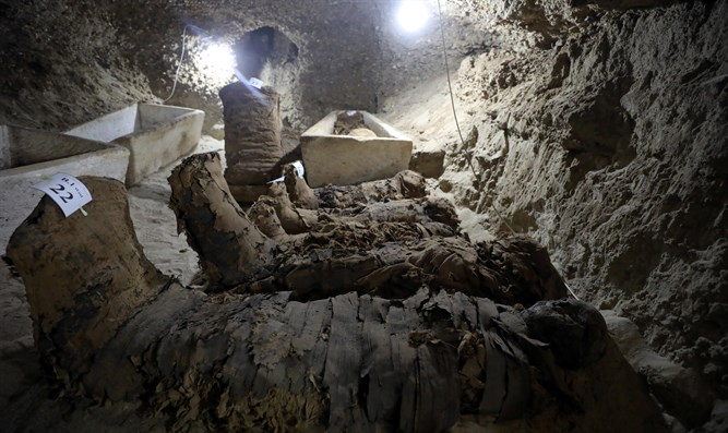 number of mummies inside the newly discovered burial site in Minya