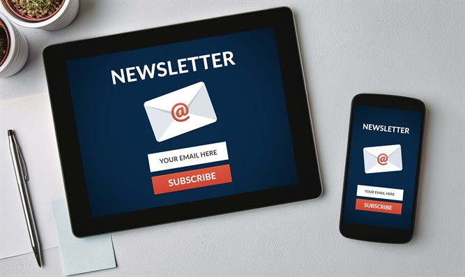 Email newsletter (illustrative)
